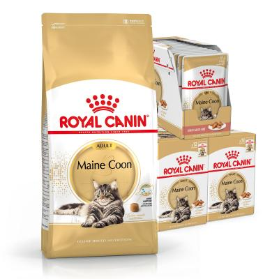 Royal Canin Bundle Maine Coon Adult Wet And Dry Cat Food