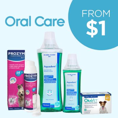 Oral Care From $1
