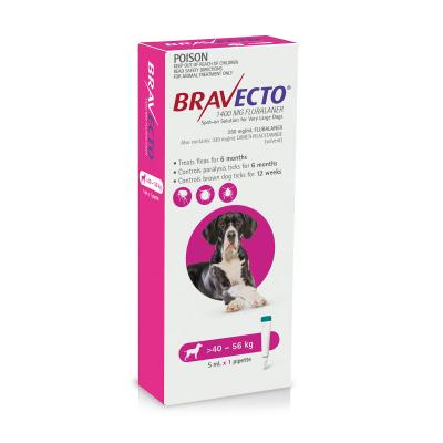 Bravecto Spot On For Dogs Pink 40-56kg 1 Pack
