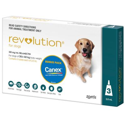 Revolution For Dogs 20.1-40kg Teal 3 Pack With Canex