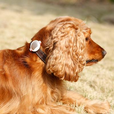 PETKIT FIT P2 Activity And Sleep Monitor Gold For Dogs And Cats