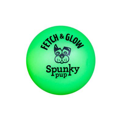 Spunky Pup Fetch And Glow In The Dark Ball Large Toy For Dogs 9cm