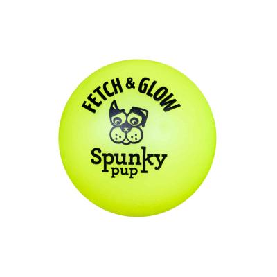 Spunky Pup Fetch And Glow In The Dark Ball Medium Toy For Dogs 6cm