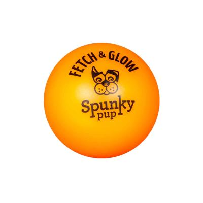 Spunky Pup Fetch And Glow In The Dark Ball 2 Pack Small Toy For Dogs 5cm