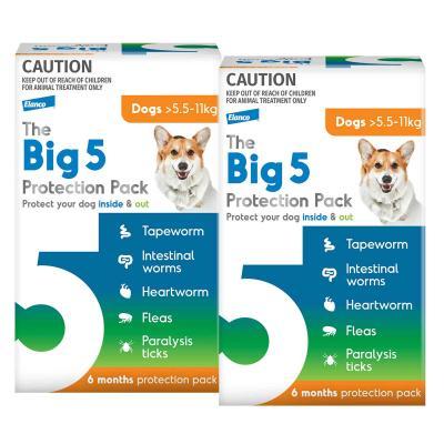 The Big 5 Protection Pack For Dogs Orange 5.5kg-11kg 12 Pack (Interceptor + Credelio)