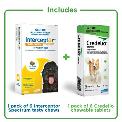 The Big 5 Protection Pack For Dogs Green 11-22kg 12 Pack (Interceptor + Credelio)