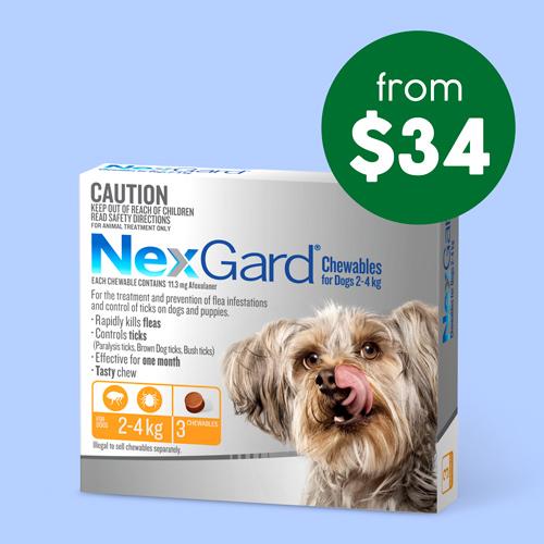 NexGard 3 Pack
