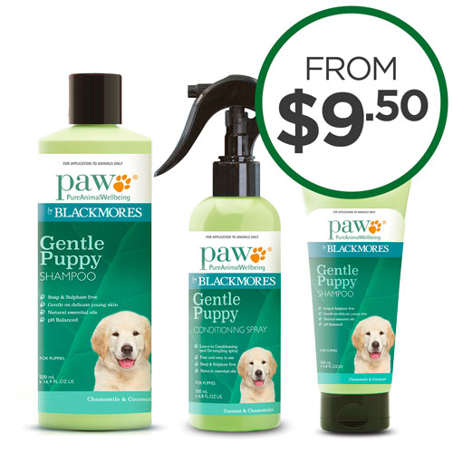 Paw Grooming Specials