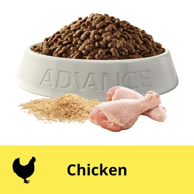 Advance Toy/Small Breed Chicken Adult Dry Dog Food 8kg