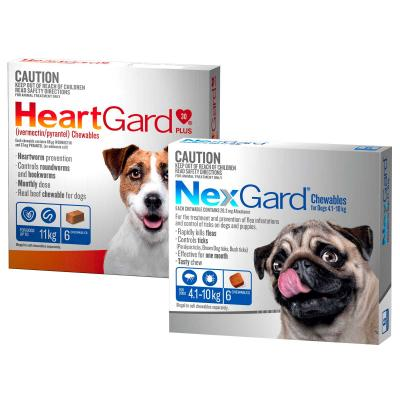 NexGard & HeartGard Small Dog Bundle 6 Pack (NexGard 4.1-10kg & HeartGard Plus Up To 11kg)
