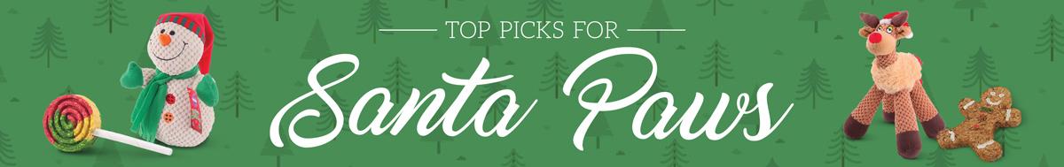 Top Picks For Santa Paws