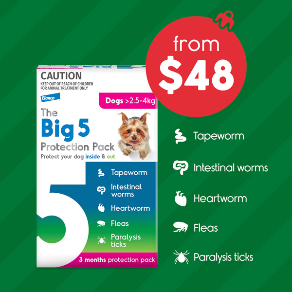 The Big 5 From $48