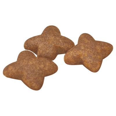 Royal Canin Mini Adult Dry Dog Food 2kg