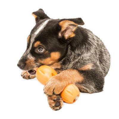 West Paw ZogoFlex Qwizl Aqua Blue Large Treat Dispensing Puzzle Toy For Dogs