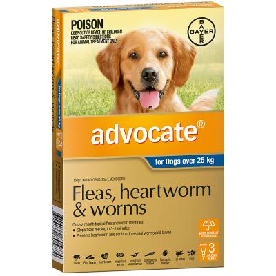 Advocate For Dogs XLarge Over 25kg 3 Pack