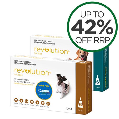 Revolution 12 Pack