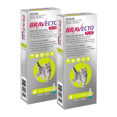 Bravecto Plus Spot On For Kittens & Small Cats 1.2 - 2.8kg 2 Pack