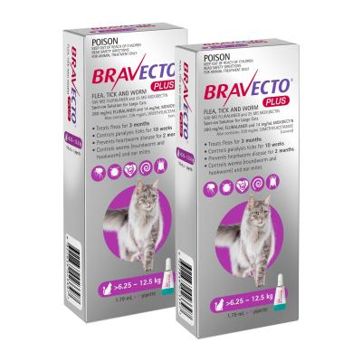 Bravecto Plus Spot On For Large Cats 6.25 - 12.5kg 2 Pack