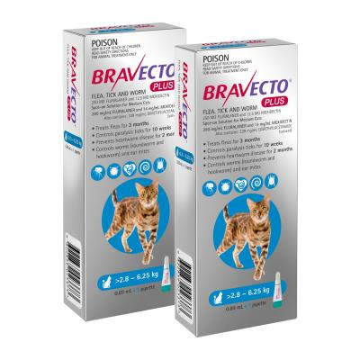 Bravecto Plus Spot On For Medium Cats 2.8 - 6.25kg 2 Pack