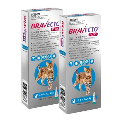 Bravecto Plus Spot On For Medium Cats 2.8 - 6.25kg 2 Pack