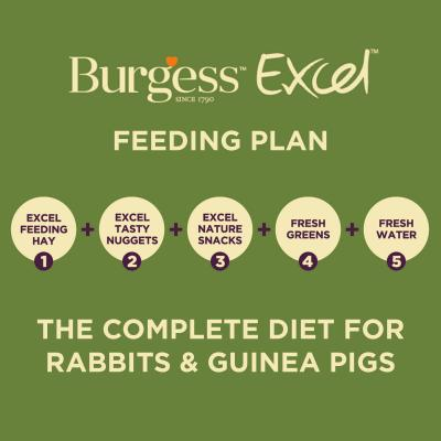 Burgess Excel Light Nuggets With Mint Pellet Food For Overweight Adult Rabbits 2kg