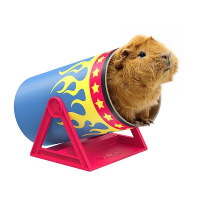 Haypigs Cavy Cannonball Tilting Tunnel For Small Animals