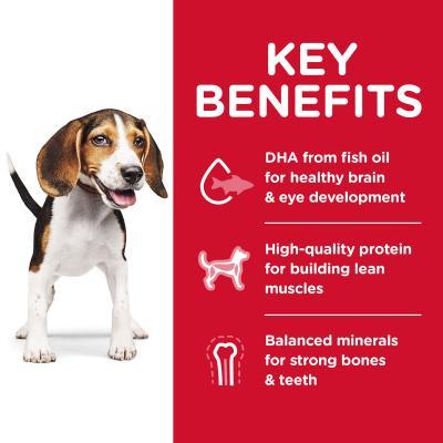 Hills Science Diet Chicken Meal Barley Recipe Puppy Dry Dog Food 12kg  (10345HG)