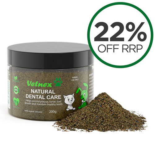 Vetnex Dental Care