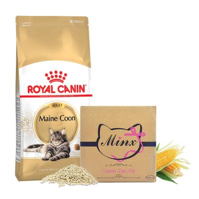 Royal Canin Maine Coon Adult Dry Cat Food 10kg