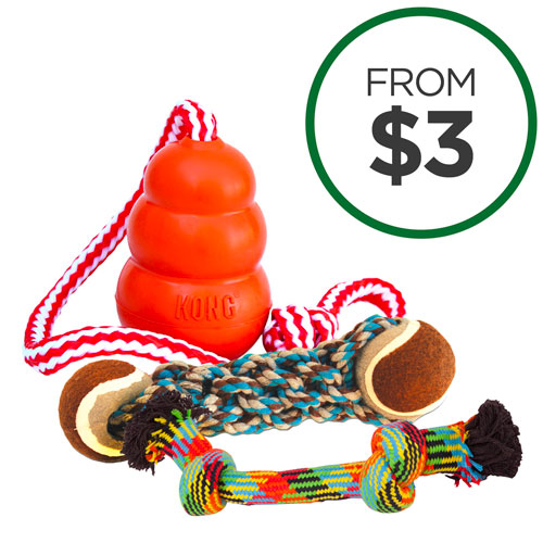 Riotous Rope Toy Round Up
