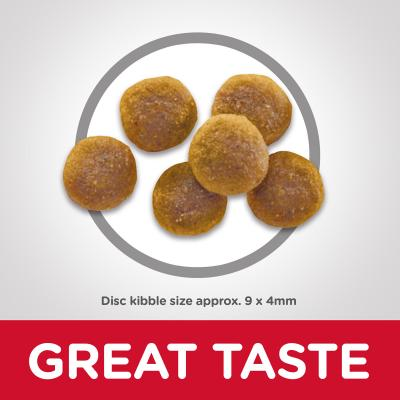 Hills Science Diet Chicken Recipe Adult Dry Cat Food 6kg  (6496HG)