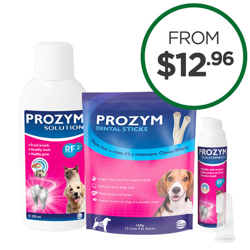 Prozym Dental