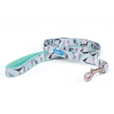 Kazoo Funky Nylon Lead Mint Abstract 1200 x 25mm For Dogs