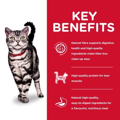 Hills Science Diet Indoor Adult Dry Cat Food 8kg