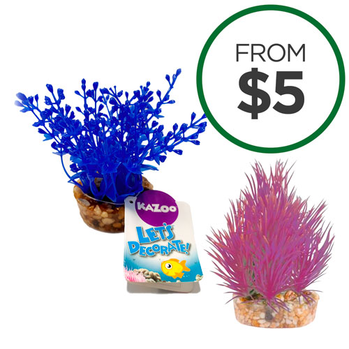 Kazoo Aquarium Mini Plant