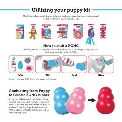 KONG Puppy Pack Treats And Medium Toys For Dogs