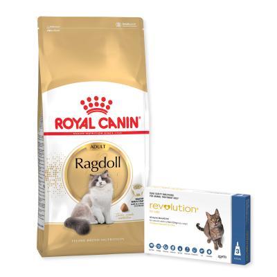 Revolution Cat 2.6-7.5kg Blue 3 Pack With Royal Canin Ragdoll Adult Dry Cat Food 10kg