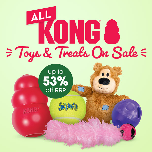 All KONG On Sale