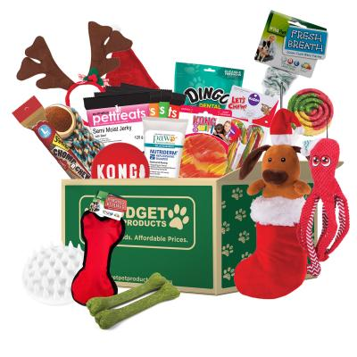 Christmas In July Surprise Box Toys And Treats Medium To Large For Dogs