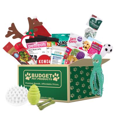 Christmas In July Surprise Box Toys And Treats Small To Medium For Dogs