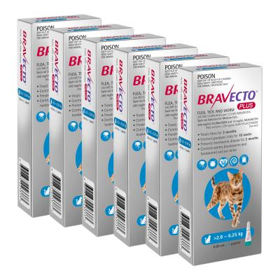 Bravecto Plus Spot On For Medium Cats 2.8 - 6.25kg 6 Pack