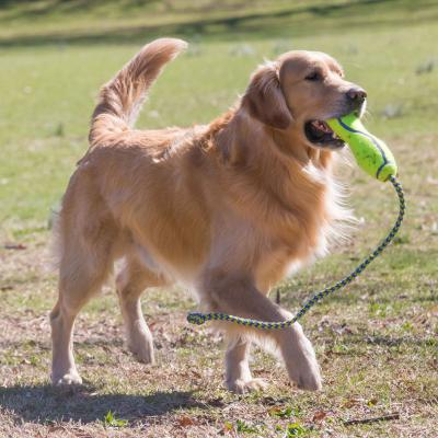 KONG AirDog Squeaker Fetch Stick With Rope Nonabrasive Felt Large Toy For Dogs