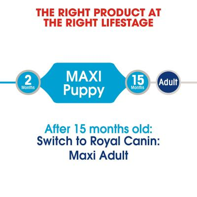 Royal Canin Maxi Puppy Loaf Pouches Wet Dog Food 10 x 140g