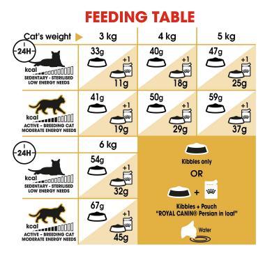Royal Canin Persian Adult Dry Cat Food 10kg