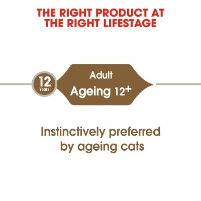 Royal Canin Ageing In Jelly 12+ Years Mature/Senior Pouches Wet Cat Food 85g x 36