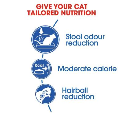 Royal Canin Indoor Adult Dry Cat Food 2kg