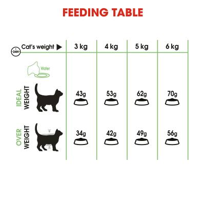 Royal Canin Digestive Care Adult Dry Cat Food 4kg