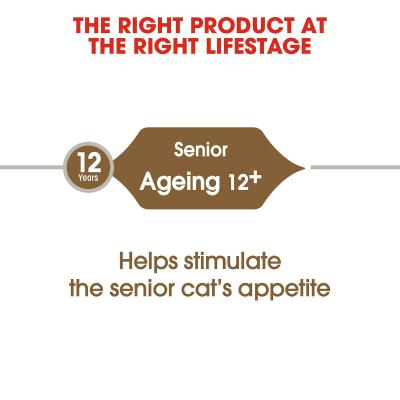 Royal Canin Ageing 12+ Years Mature/Senior Dry Cat Food 2kg
