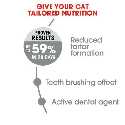 Royal Canin Oral Care Adult Dry Cat Food 1.5kg