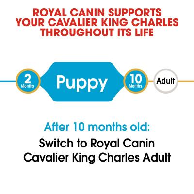 Royal Canin Cavalier King Charles Puppy/Junior Dry Dog Food 1.5kg
